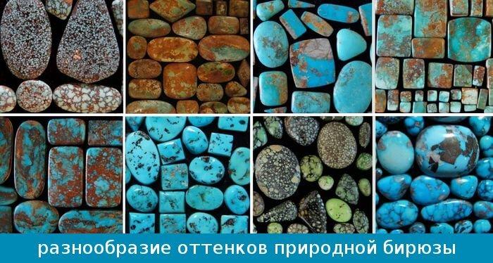 biruyza_raznoobrazie_cveta