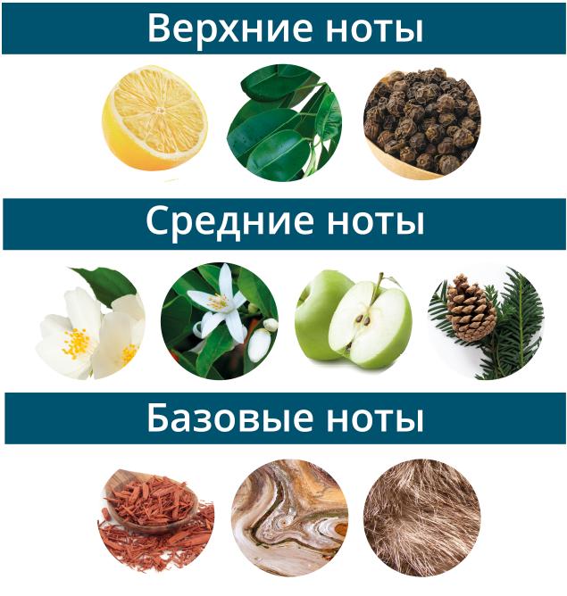 ноты парфюма Александрит