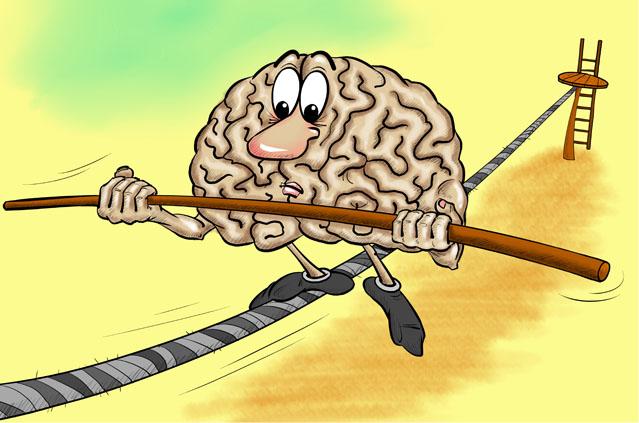 Мозг на канате сохраняет равновесие