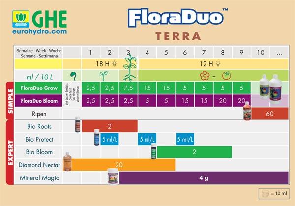 CHART-FLORADUO-TERRA-OK.jpg