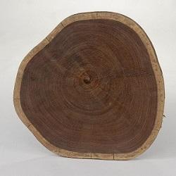 ствол дерева Венге
