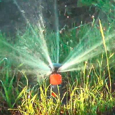 Выбор насоса для полива сада и огорода