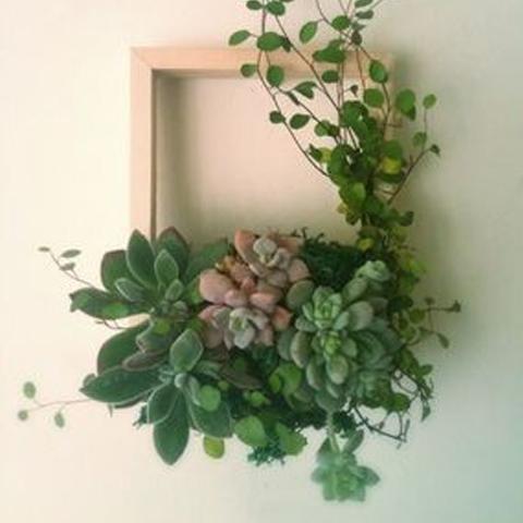Декор стен своими руками. Картины из стабилизированных растений. Часть 2