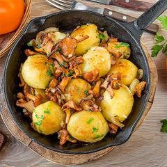Картофель молодой с лисичками под «сливочным» соусом с тимьяном и петрушкой