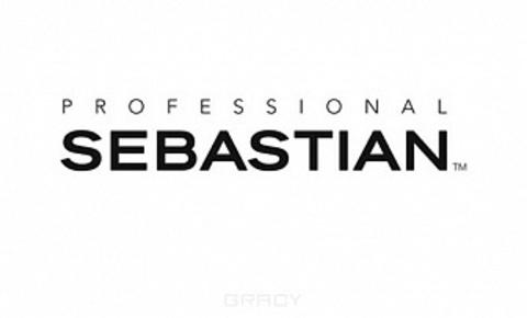 SEBASTIAN (США)