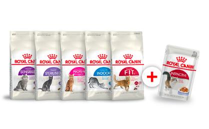 Акция Royal Canin 12 паучей в подарок