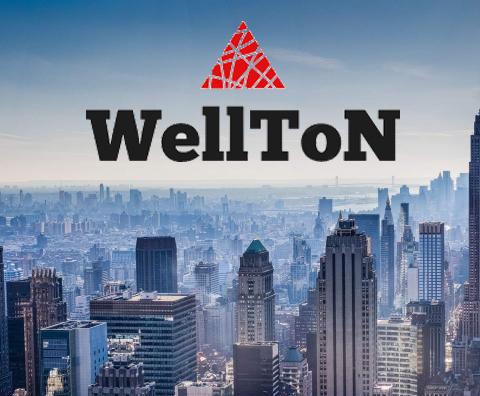 Почему стоит выбрать Wellton?