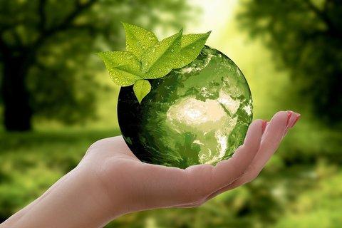 Как сберечь чистоту нашей планеты?