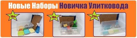 Новые Наборы Новичка Улитковода