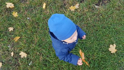 Чем заняться с ребёнком на прогулке?
