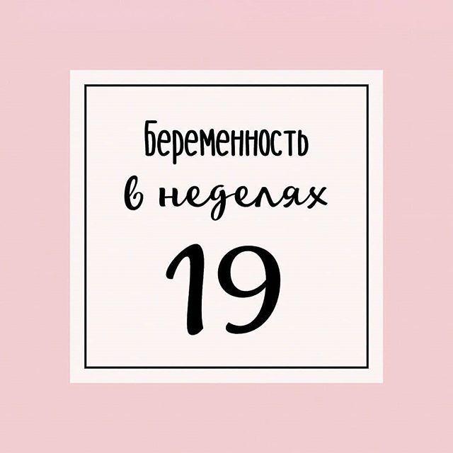 Девятнадцатая неделя беременности
