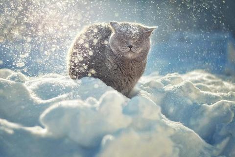 Холода наступили