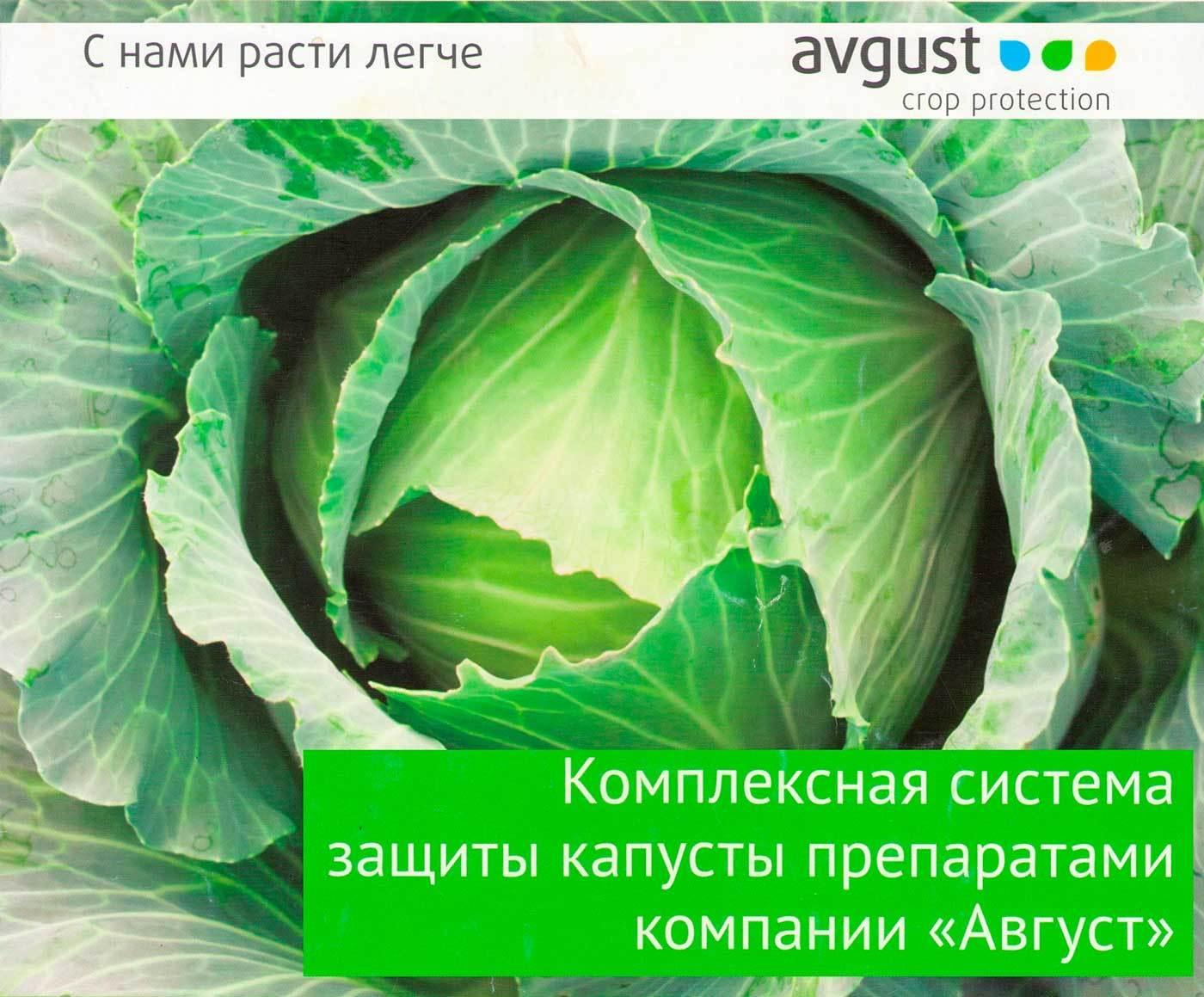 """Защита капусты препаратами компании """"Август"""""""