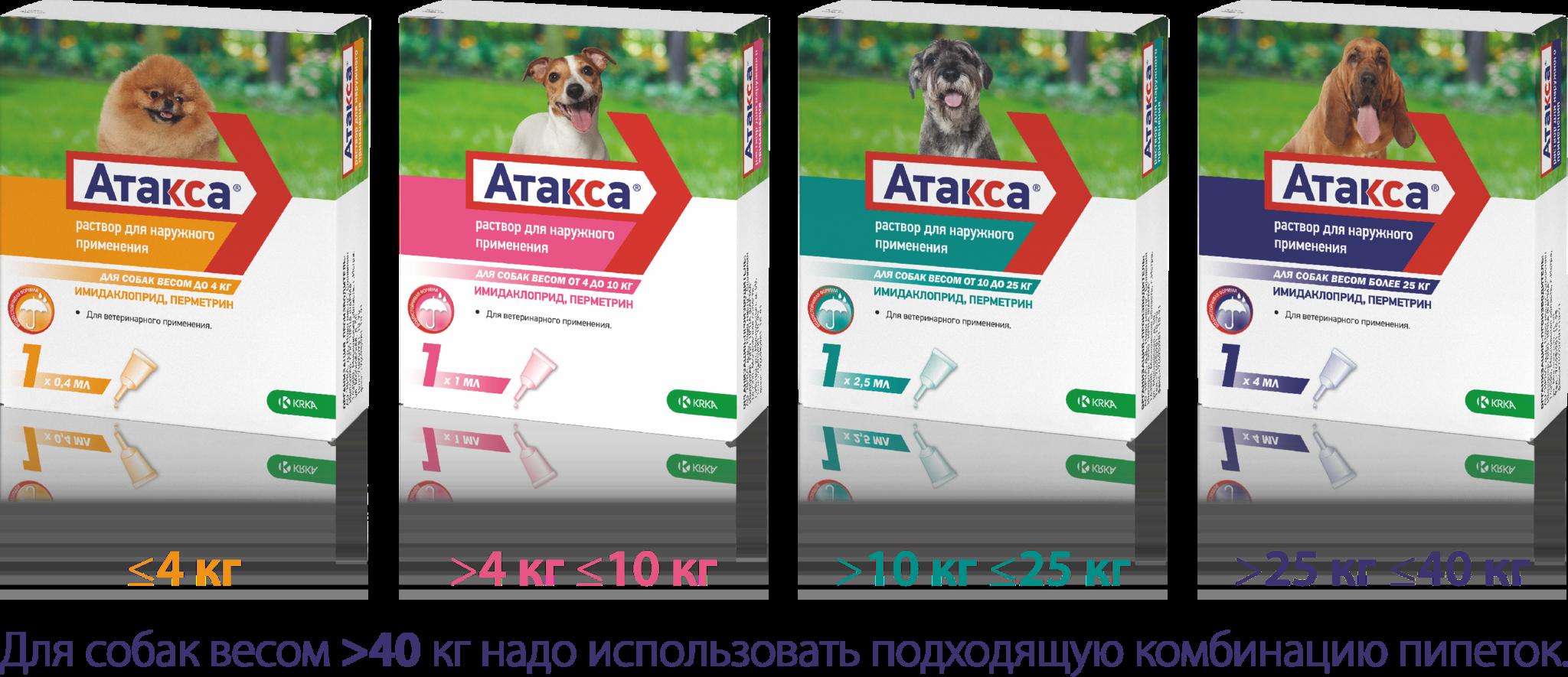 Эксклюзивная новинка - АТАКСА: доступная и эффективная альтернатива от эктопаразитов у собак.