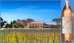 Вино недели с 7 мая - Chateau La Tour de l'Eveque Petale de Rose 2017