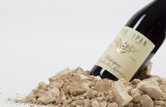 Вино недели с 9 апреля - Pieropan Ruberpan Valpolicella Superiore
