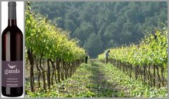 Вино недели - Golan Heights Winery Gamla Cabernet Sauvignon 2015