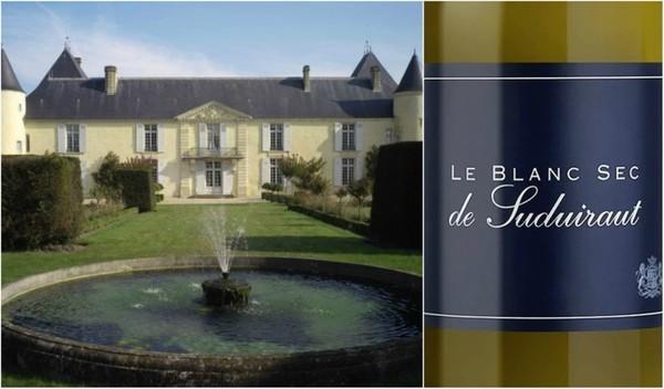 Вино недели с 15 января - Le Blanc Sec de Suduiraut 2016