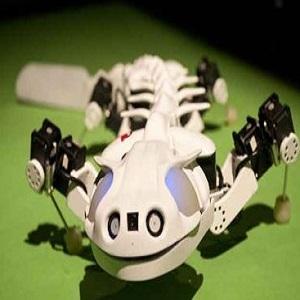 Робот Pleurobot копирует поведение саламандры