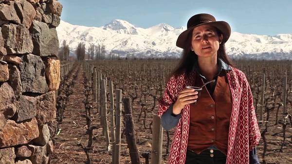 Лаура Катена рассказала о роли женщины в современном винном бизнесе