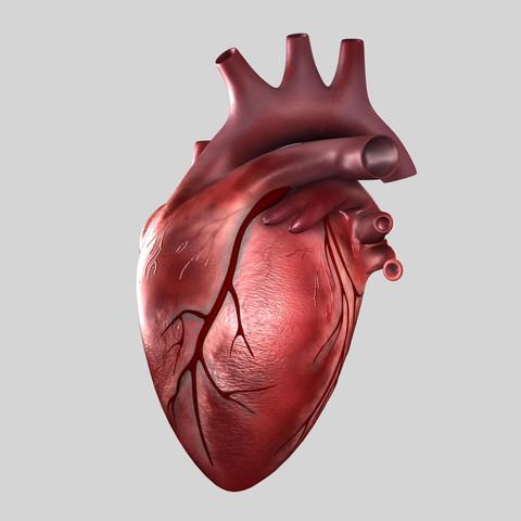 Огневка и кардиология