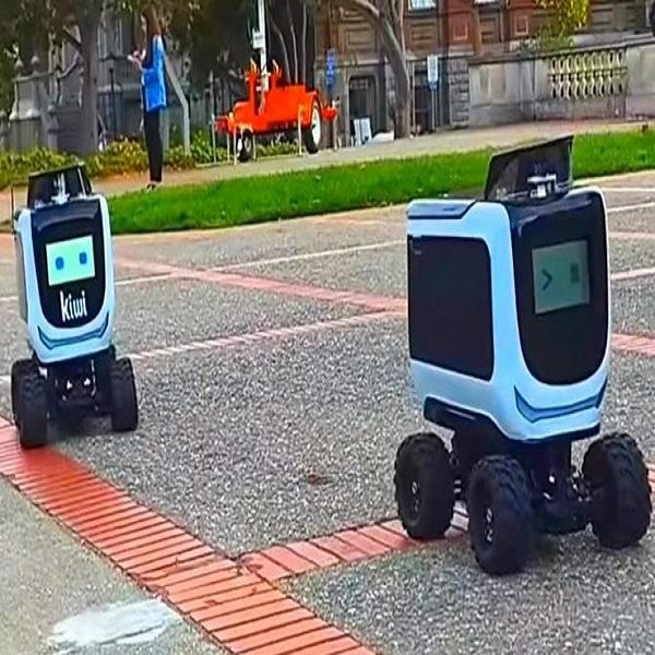 Очаровательные роботы-курьеры накормят студентов