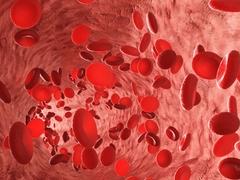 С гормонами стресса помогут бороться наночастицы магнита