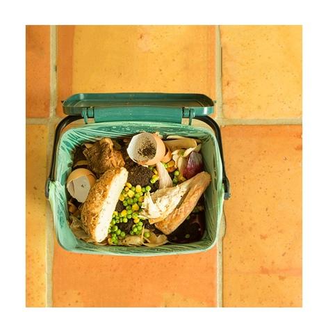Что происходит с пищевыми отходами на свалках?