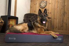 SCRUFFS - ортопедические, термальные и охлаждающие лежаки для собак и теплосохраняющие попоны производства Англия!
