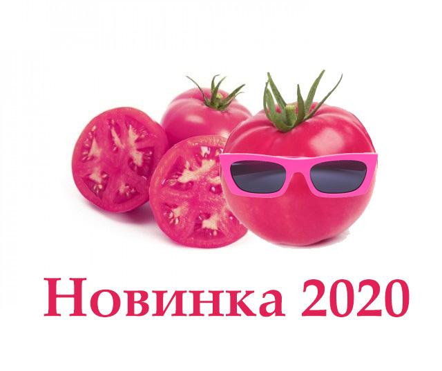 Новинка от Rijk Zwaan - розовый индетерминантный томат Пинквин