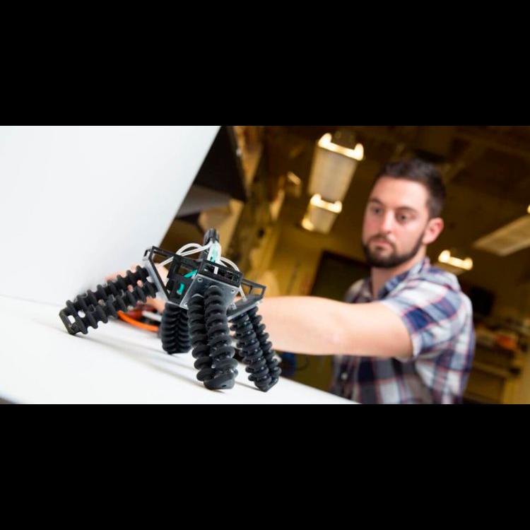 Мягкий робот от американских разработчиков
