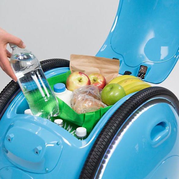 Робот-чемодан Gita облегчит прогулки