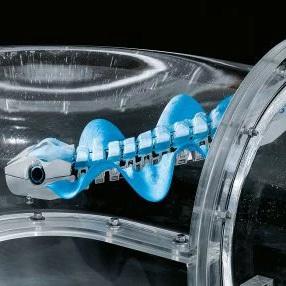 BionicFinWave позаимствовал принцип перемещения у природы
