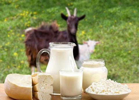 Сепаратор для козьего молока, какой он?