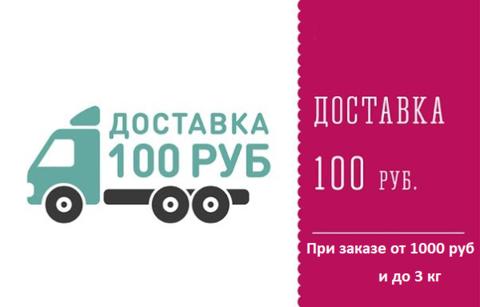 Доставка 100 рублей