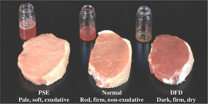 Рекомендации по выбору мясного сырья для сырокопченых и сыровяленных колбас