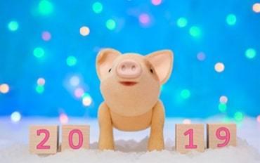 Веселая желтая свинка 2019 — хорошее настроение и тяга к переменам!