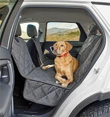 BON VOYAGE или 6 советов о поездках и путешествиях с собакой или кошкой
