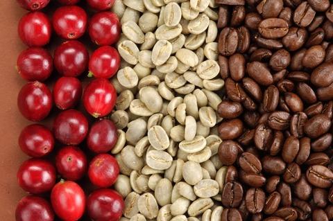 Особенности обжарки кофейных зёрен