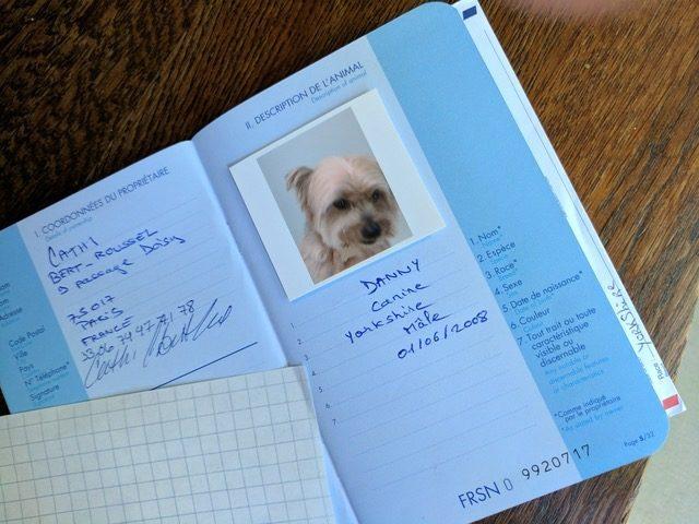 Европейский паспорт для домашних животных