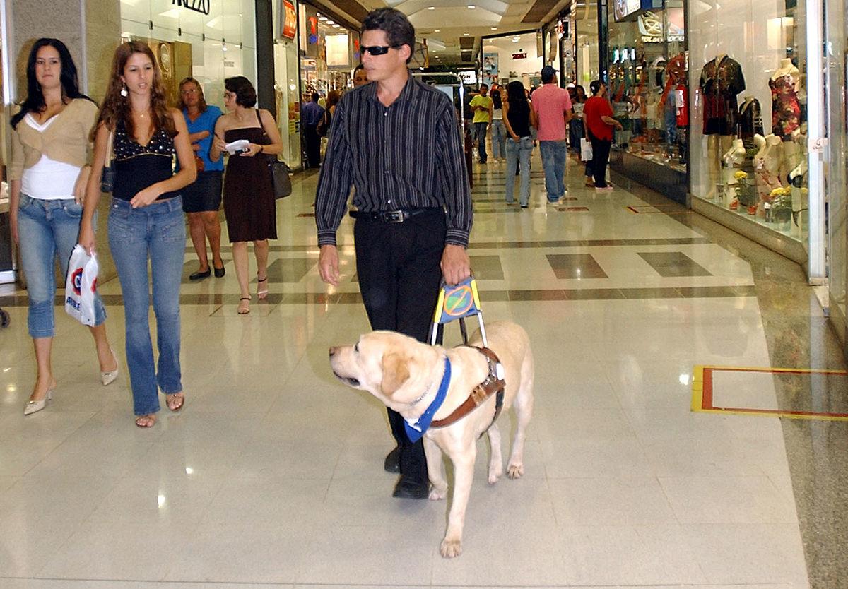 Как собака помогает человеку