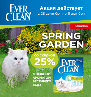 Скидка до 25% на наполнители Ever Clean