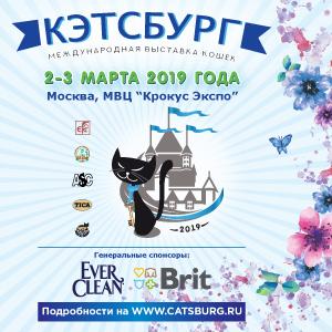 Выставка кошек «КЭТСБУРГ-2019»