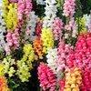 Семена цветов для озеленения