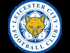 Leicester city | Лестер сити