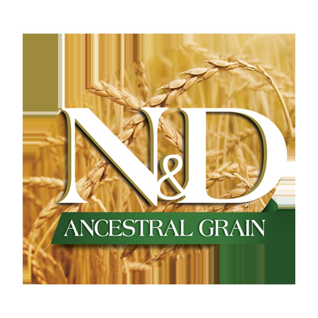 Ancestral Grain