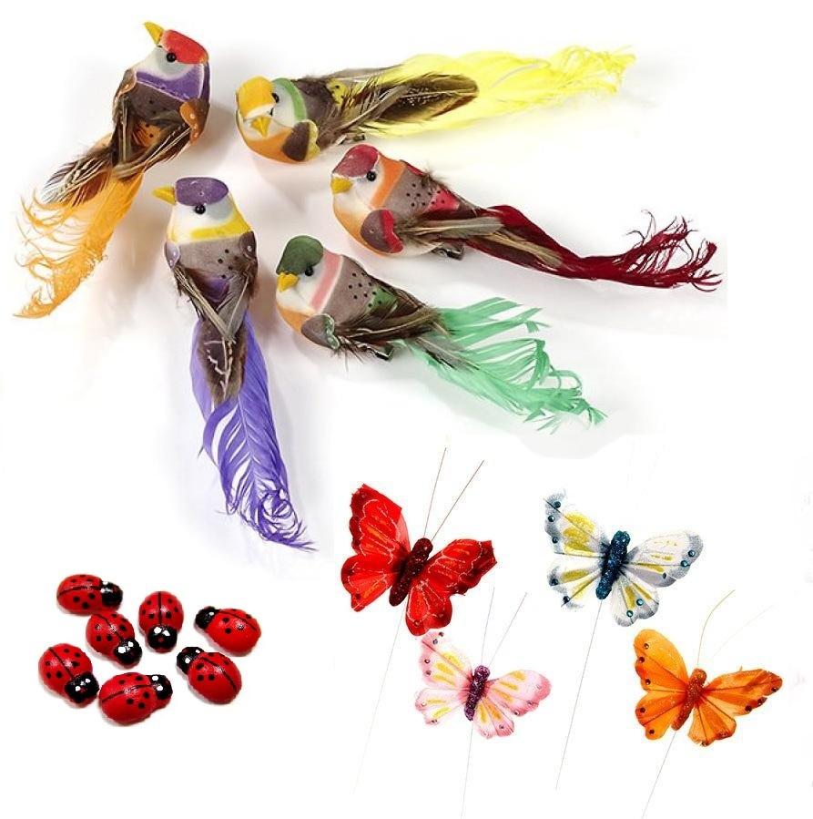 Птички, бабочки, насекомые