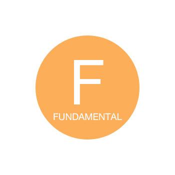 INOA - Fundamental (базовые золотистые для седых волос)