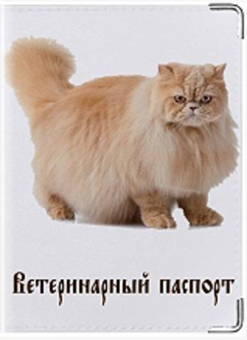 """Обложка для ветеринарного паспорта кошки""""К9"""""""