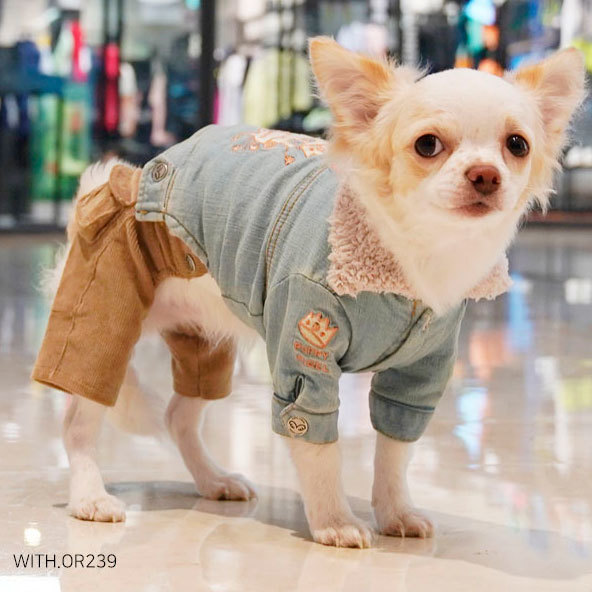 джинсовая куртка для чихуахуа